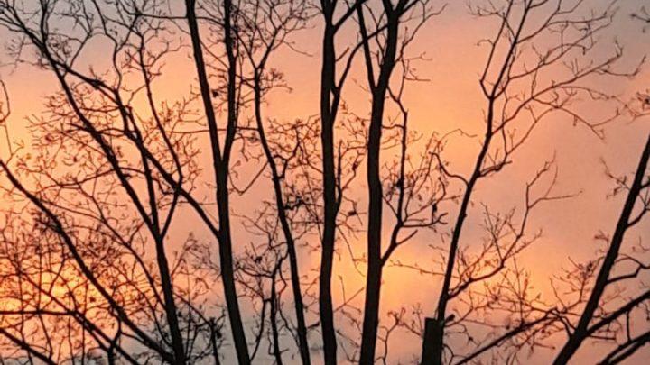 Gottes schöne Natur direkt vor unserem Haus!